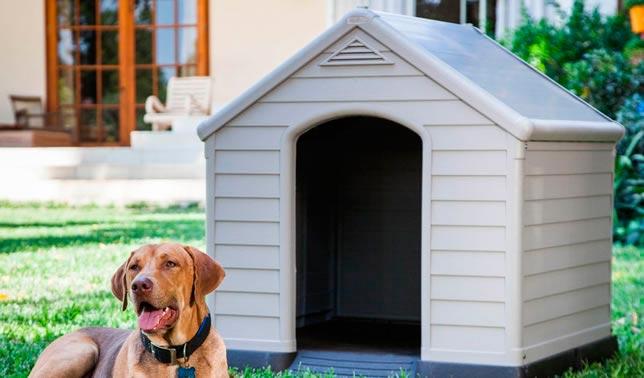casetas para perro de plastico