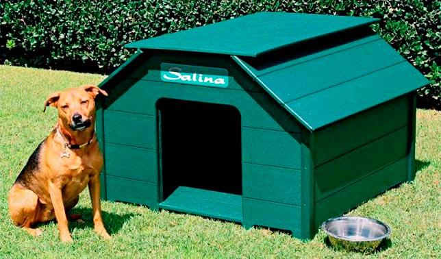 caseta para perros de plastico